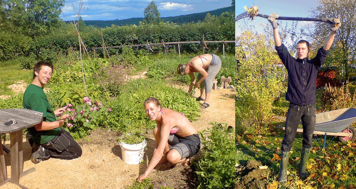 Turmalinen_WWOOF_gardening